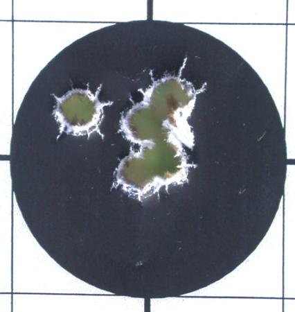 Smith & Wesson model 64 target